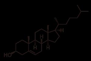 2000px-Cholesterol_svg