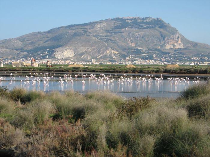 Mount Erice