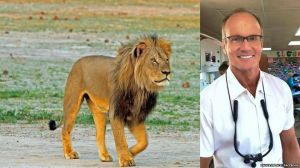 _84539613_cecilthelion3_paulafrenchcopy