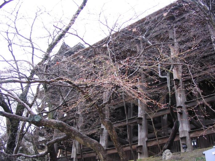 Kiyomizu-dera8