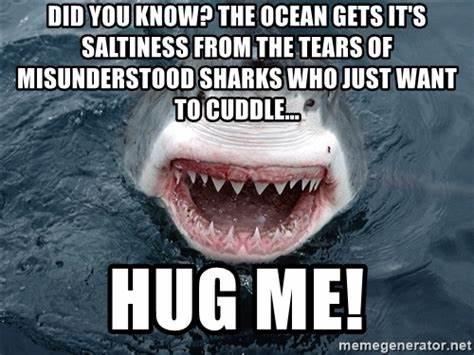 shark hug me